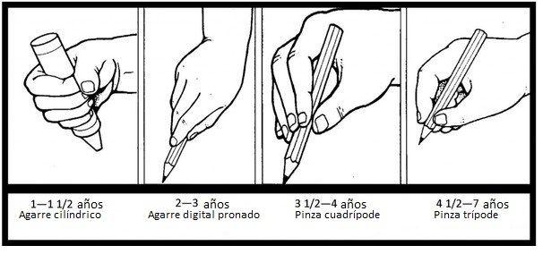evolucion del agarre del lápiz