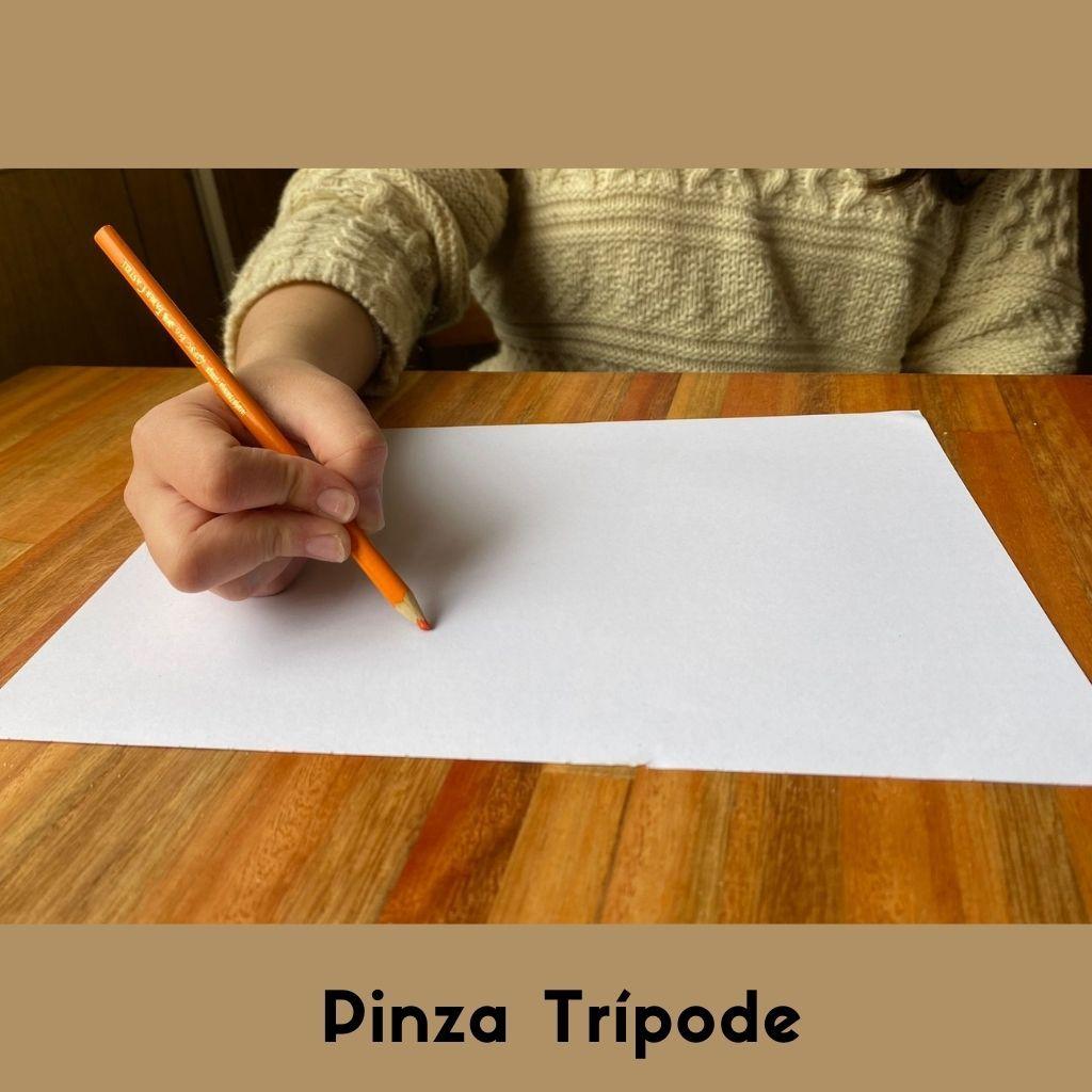 pinza tripode